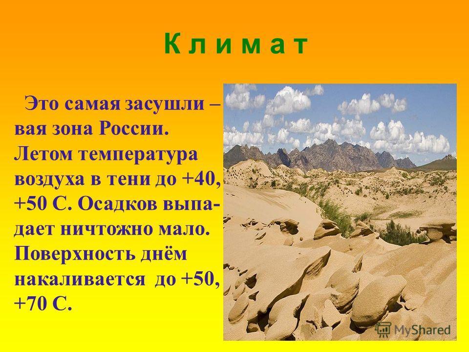 К л и м а т Это самая засушли – вая зона России. Летом температура воздуха в тени до +40, +50 C. Осадков выпа- дает ничтожно мало. Поверхность днём накаливается до +50, +70 С.