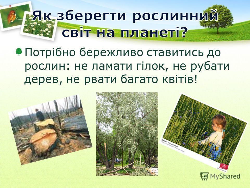 Потрібно бережливо ставитись до рослин: не ламати гілок, не рубати дерев, не рвати багато квітів!