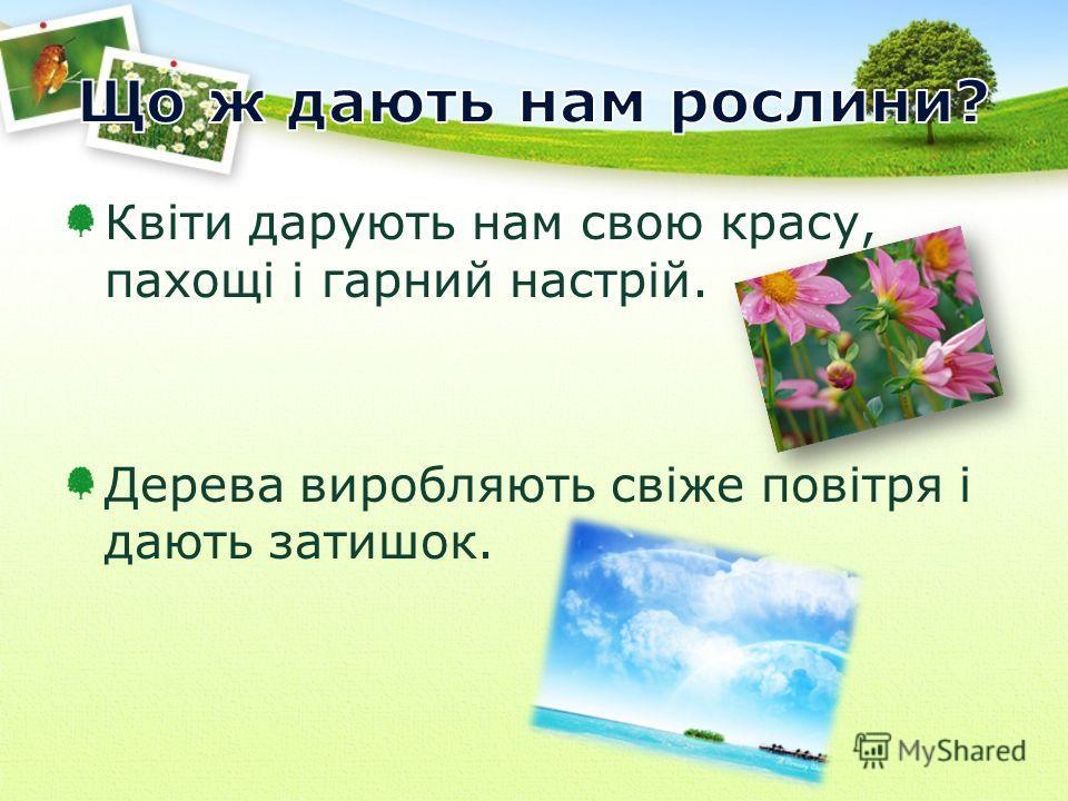 Квіти дарують нам свою красу, пахощі і гарний настрій. Дерева виробляють свіже повітря і дають затишок.