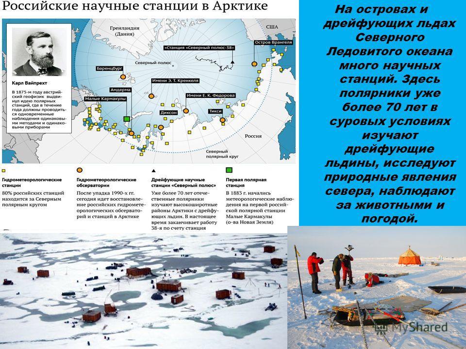 На островах и дрейфующих льдах Северного Ледовитого океана много научных станций. Здесь полярники уже более 70 лет в суровых условиях изучают дрейфующие льдины, исследуют природные явления севера, наблюдают за животными и погодой.
