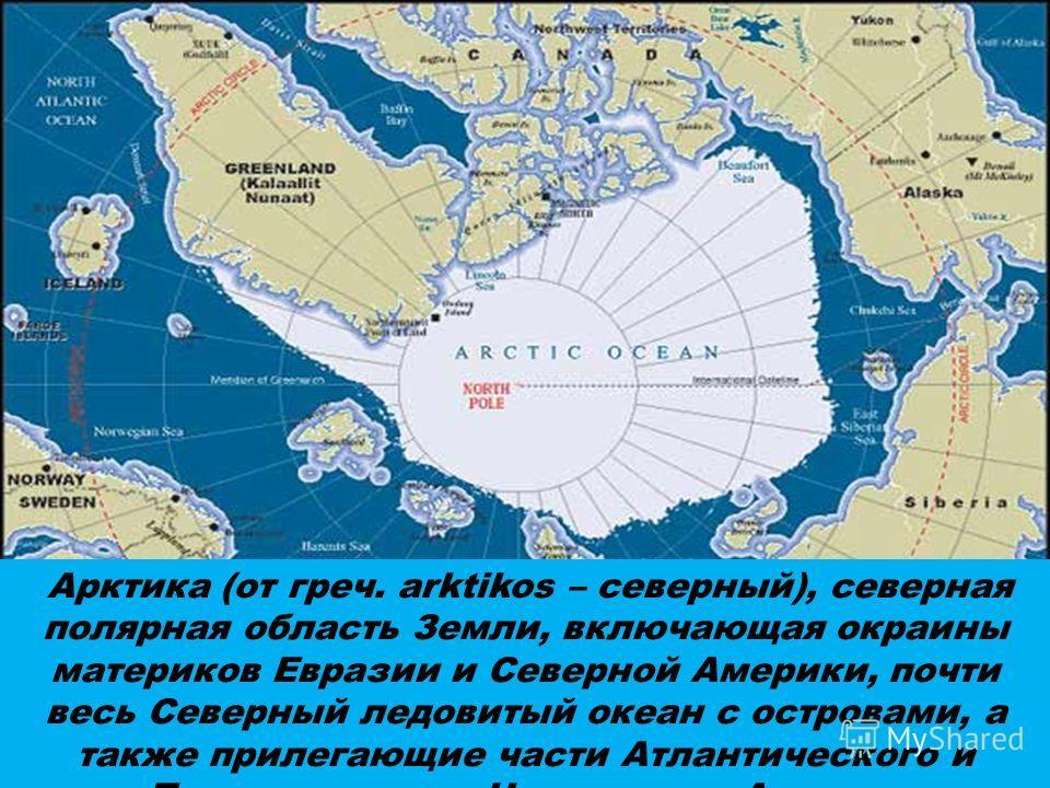 Арктика (от греч. аrktikos – северный), северная полярная область Земли, включающая окраины материков Евразии и Северной Америки, почти весь Северный ледовитый океан с островами, а также прилегающие части Атлантического и Тихого океанов. На островах