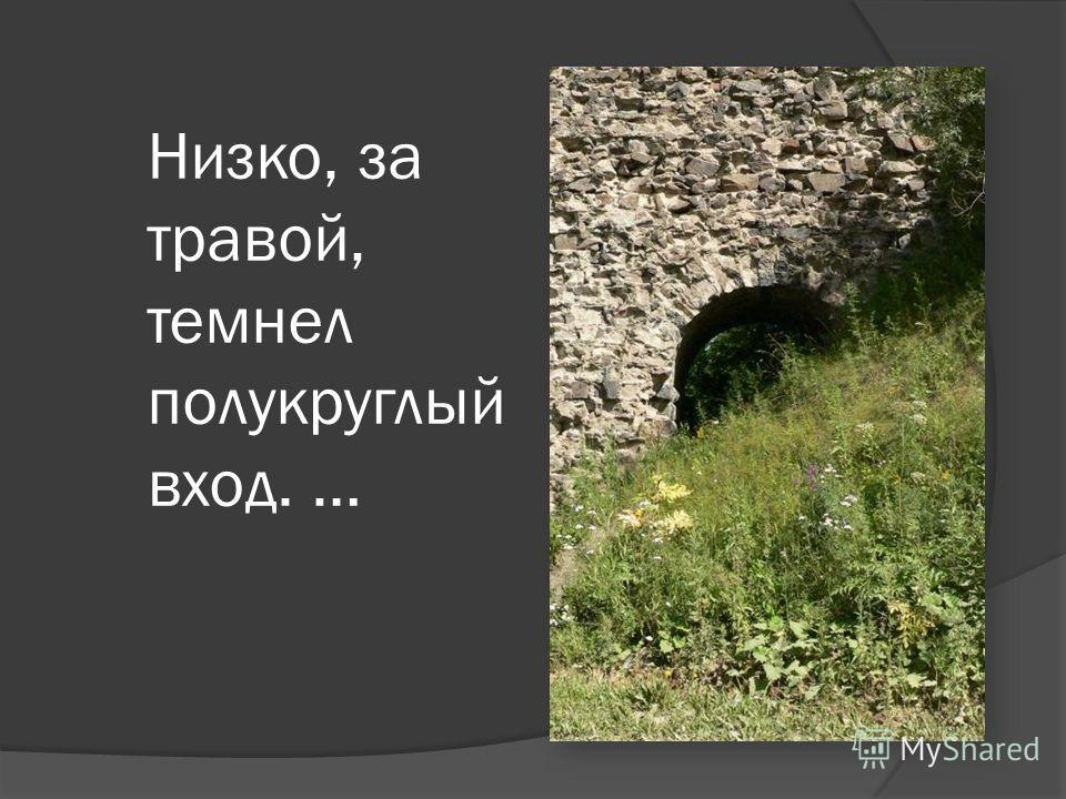 Низко, за травой, темнел полукруглый вход. …