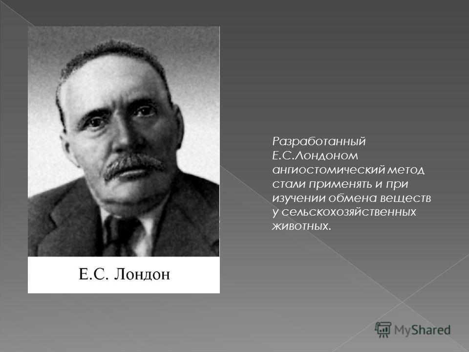Разработанный Е.С.Лондоном ангиостомический метод стали применять и при изучении обмена веществ у сельскохозяйственных животных.