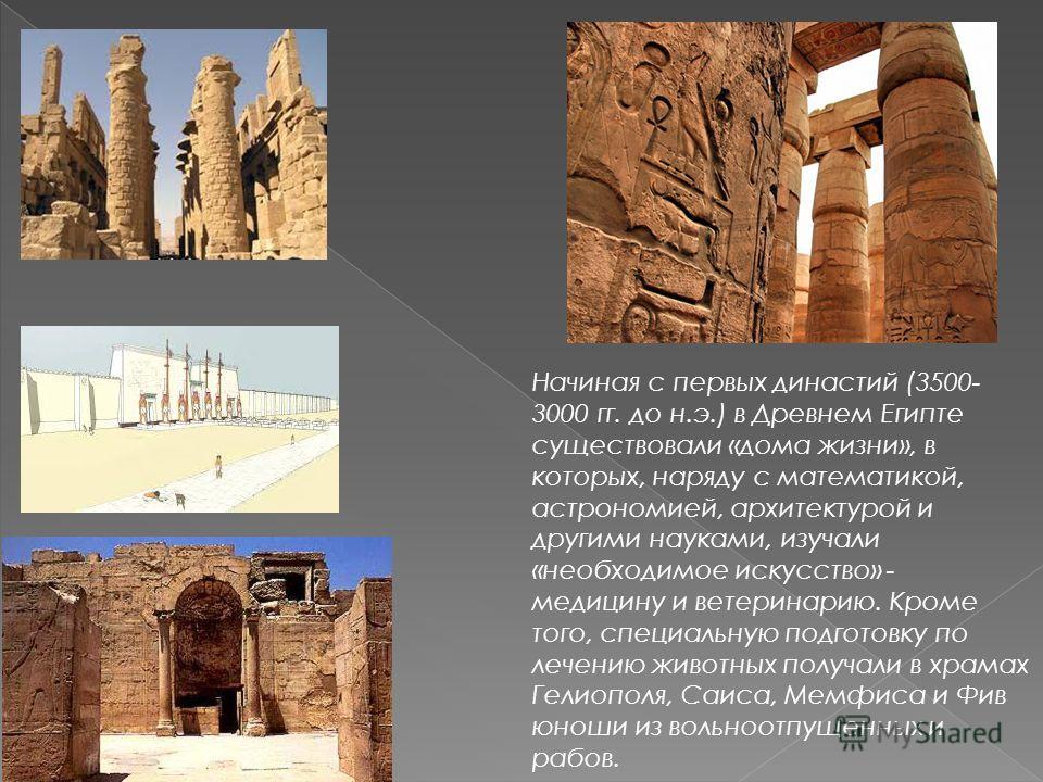 Начиная с первых династий (3500- 3000 гг. до н.э.) в Древнем Египте существовали «дома жизни», в которых, наряду с математикой, астрономией, архитектурой и другими науками, изучали «необходимое искусство» - медицину и ветеринарию. Кроме того, специал