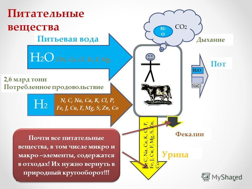 Питьевая вода H 2 O CO 2, Ca, Cl, Fe, F, Mg, N, C, Na, Ca, K, Cl, P, Fe, J, Cu, F, Mg, S, Zn, Co 2,6 млрд тонн Потребленное продовольствие H2OH2O Дыхание СО 2 Н2ОН2О Пот NaC l H2O H2O Фекалии Урина Почти все питательные вещества, в том числе микро и