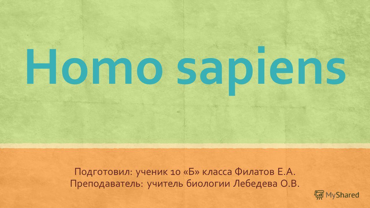 Homo sapiens Подготовил: ученик 10 «Б» класса Филатов Е.А. Преподаватель: учитель биологии Лебедева О.В.