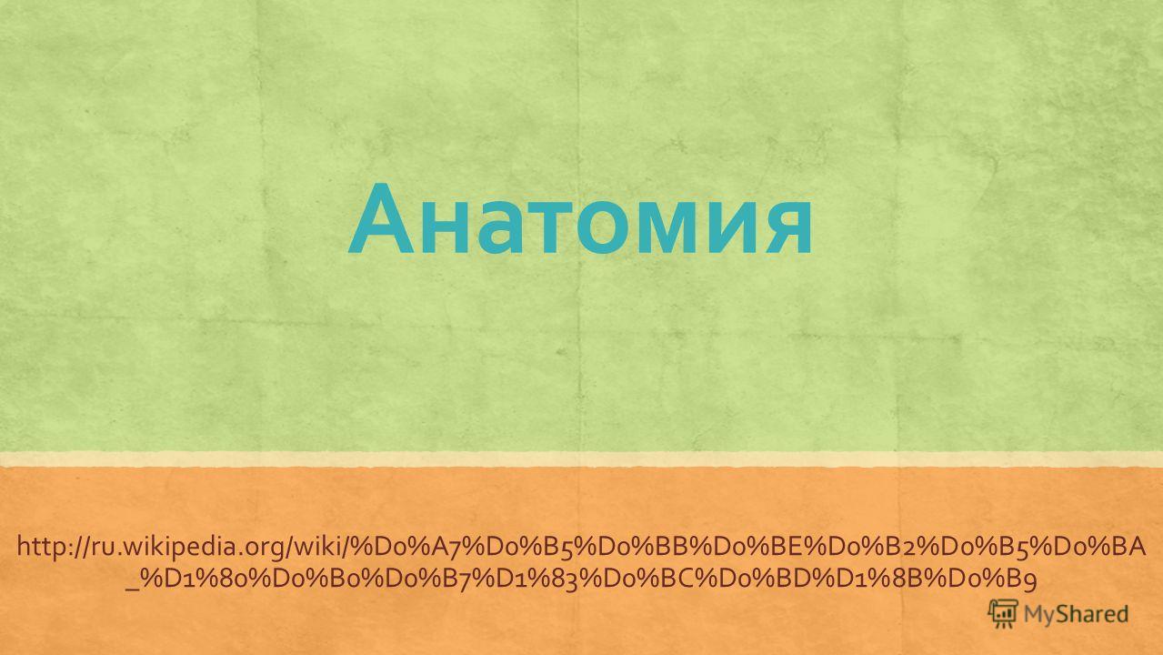 Анатомия http://ru.wikipedia.org/wiki/%D0%A7%D0%B5%D0%BB%D0%BE%D0%B2%D0%B5%D0%BA _%D1%80%D0%B0%D0%B7%D1%83%D0%BC%D0%BD%D1%8B%D0%B9