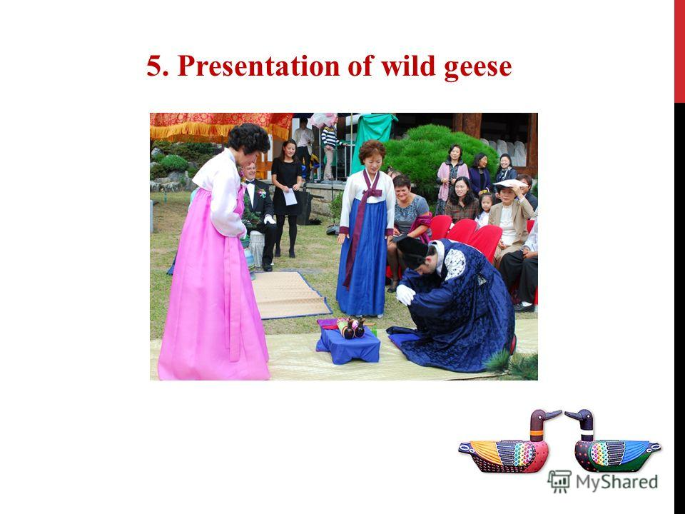 5. Presentation of wild geese