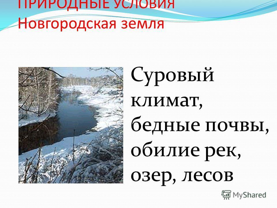 ПРИРОДНЫЕ УСЛОВИЯ Новгородская земля Суровый климат, бедные почвы, обилие рек, озер, лесов