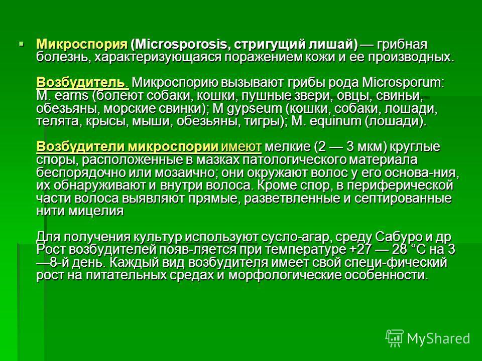 Микроспория (Microsporosis, стригущий лишай) грибная болезнь, характеризующаяся поражением кожи и ее производных. Возбудитель. Микроспорию вызывают грибы рода Microsporum: M. earns (болеют собаки, кошки, пушные звери, овцы, свиньи, обезьяны, морские