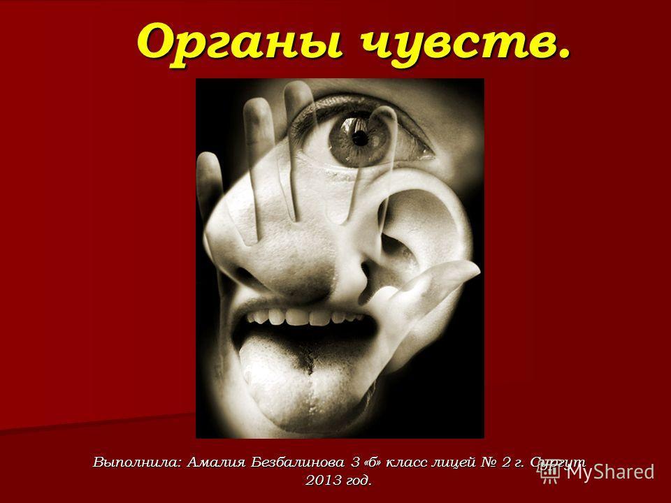Органы чувств. Выполнила: Амалия Безбалинова 3 «б» класс лицей 2 г. Сургут 2013 год.
