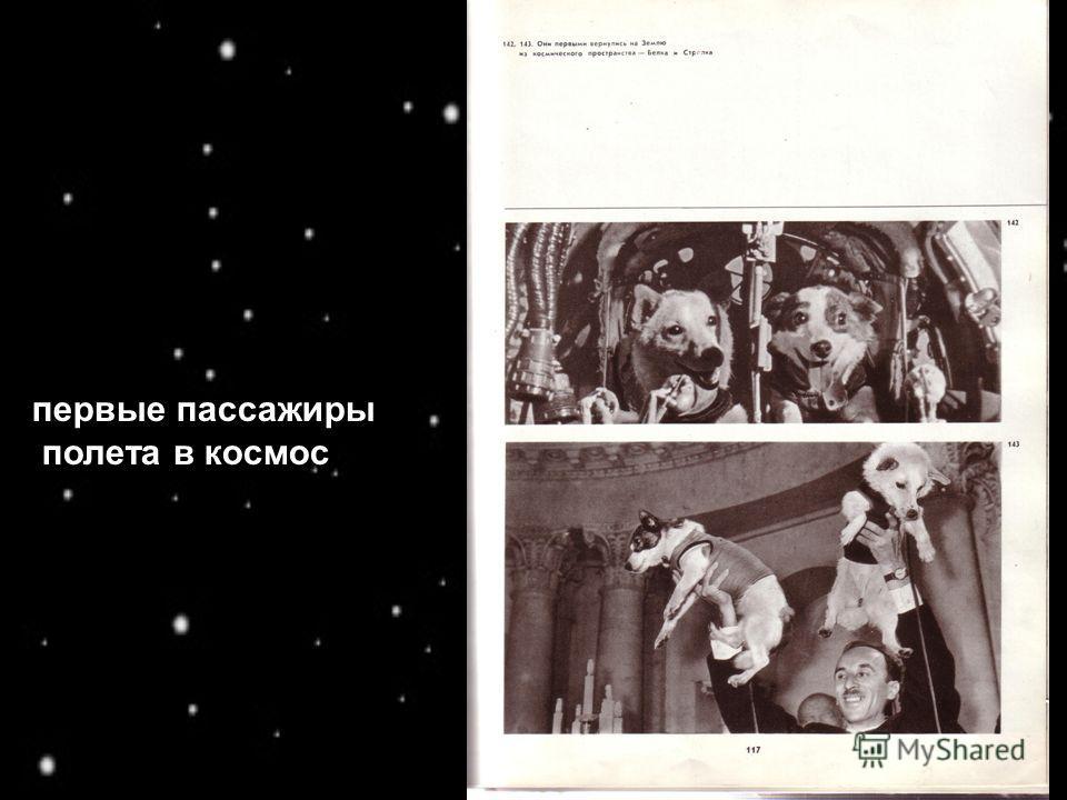 первые пассажиры полета в космос
