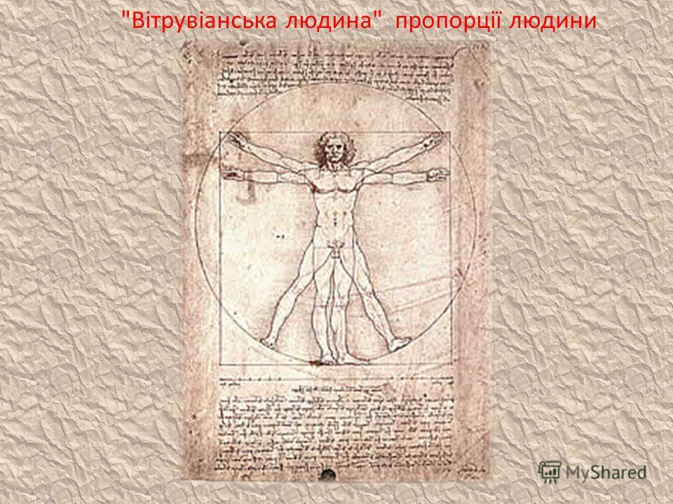 Вітрувіанська людина пропорції людини