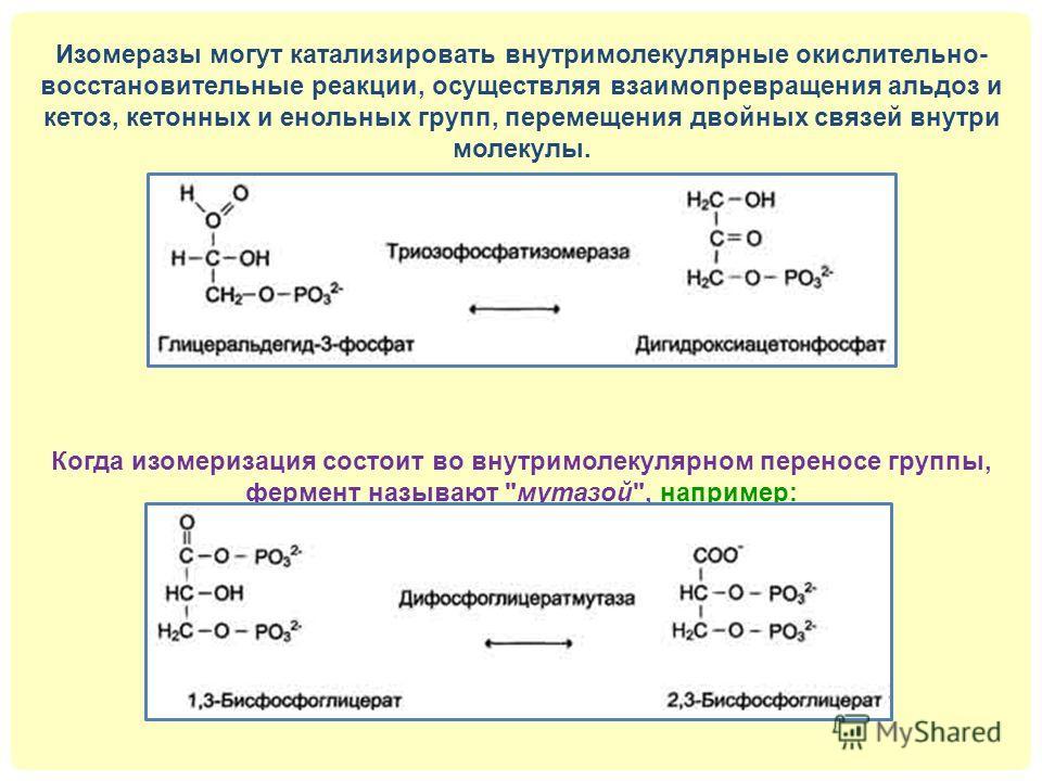 Изомеразы могут катализировать внутримолекулярные окислительно- восстановительные реакции, осуществляя взаимопревращения альдоз и кетоз, кетонных и енольных групп, перемещения двойных связей внутри молекулы. Когда изомеризация состоит во внутримолеку