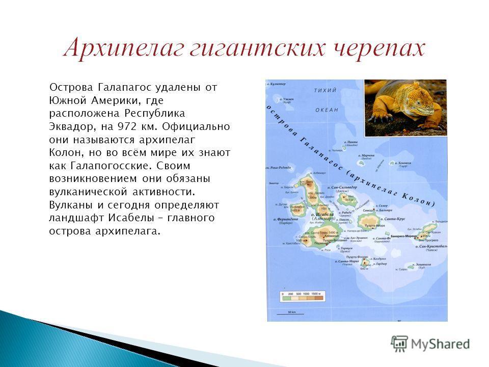 Острова Галапагос удалены от Южной Америки, где расположена Республика Эквадор, на 972 км. Официально они называются архипелаг Колон, но во всём мире их знают как Галапогосские. Своим возникновением они обязаны вулканической активности. Вулканы и сег