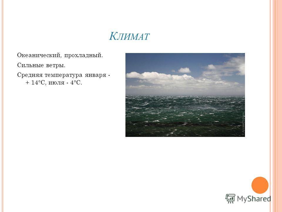 К ЛИМАТ Океанический, прохладный. Сильные ветры. Средняя температура января - + 14°С, июля - 4°С.