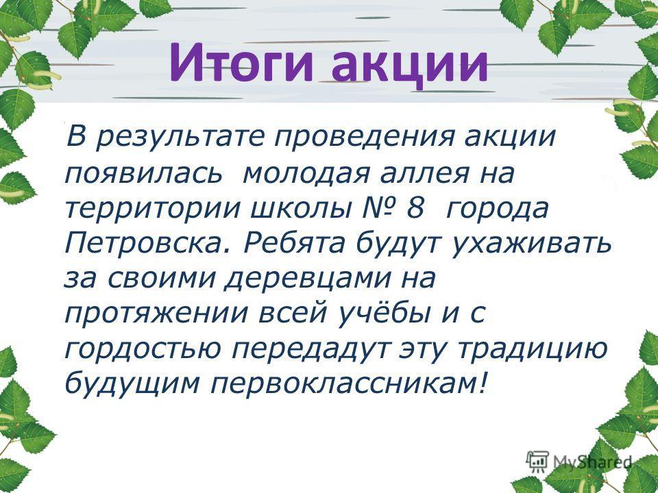 Итоги акции В результате проведения акции появилась молодая аллея на территории школы 8 города Петровска. Ребята будут ухаживать за своими деревцами на протяжении всей учёбы и с гордостью передадут эту традицию будущим первоклассникам!