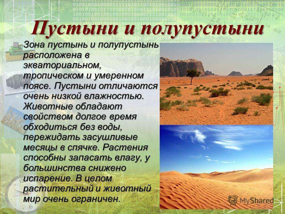 Пустыни и полупустыни Зона пустынь и полупустынь расположена в экваториальном, тропическом и умеренном поясе. Пустыни отличаются очень низкой влажностью. Животные обладают свойством долгое время обходиться без воды, пережидать засушливые месяцы в спя