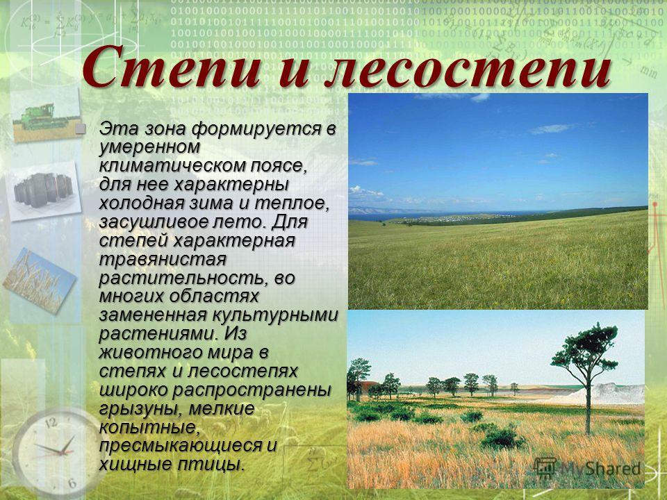 Степи и лесостепи Эта зона формируется в умеренном климатическом поясе, для нее характерны холодная зима и теплое, засушливое лето. Для степей характерная травянистая растительность, во многих областях замененная культурными растениями. Из животного