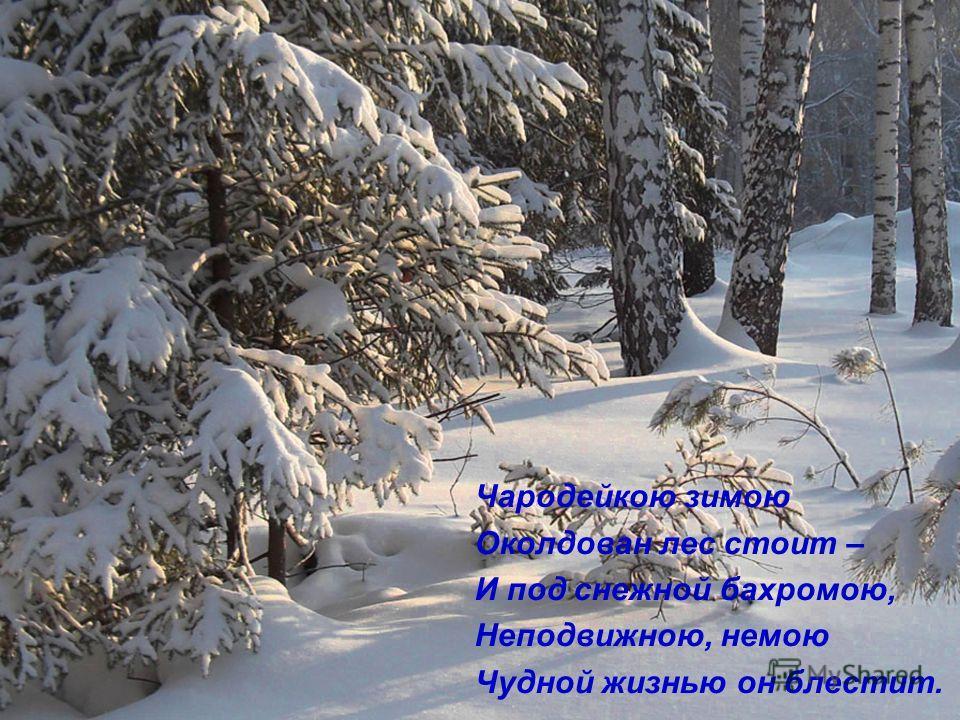 Чародейкою зимою Околдован лес стоит – И под снежной бахромою, Неподвижною, немою Чудной жизнью он блестит.