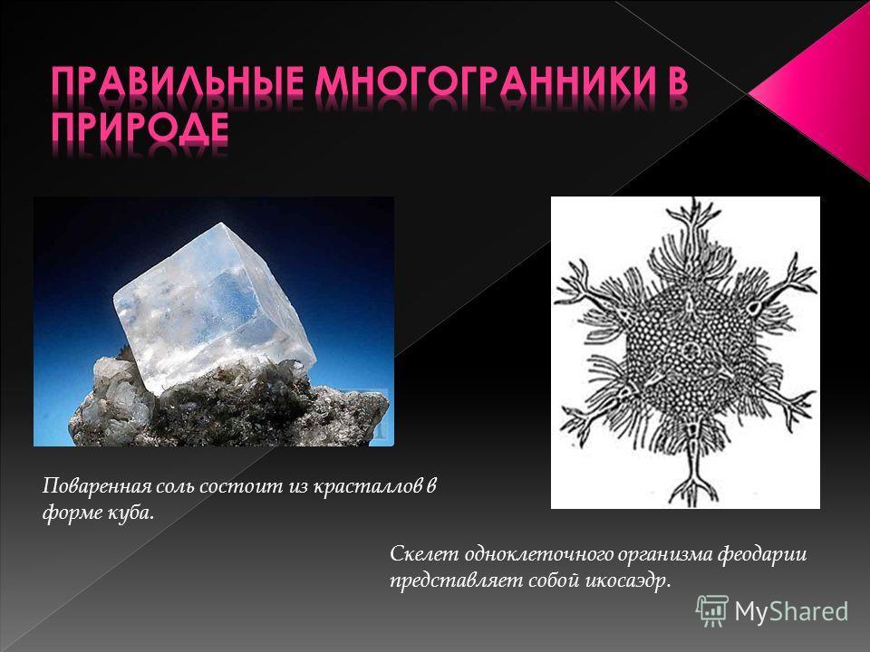 Поваренная соль состоит из красталлов в форме куба. Скелет одноклеточного организма феодарии представляет собой икосаэдр.