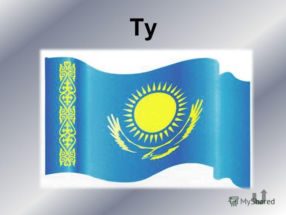 Переведите с русского языка на казахский: Флаг