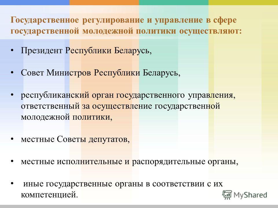 Президент Республики Беларусь, Совет Министров Республики Беларусь, республиканский орган государственного управления, ответственный за осуществление государственной молодежной политики, местные Советы депутатов, местные исполнительные и распорядител