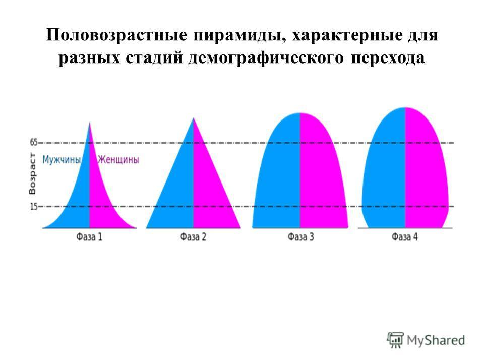 Половозрастные пирамиды, характерные для разных стадий демографического перехода