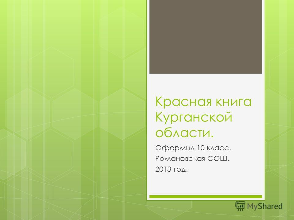 Красная книга Курганской области. Оформил 10 класс. Романовская СОШ. 2013 год.