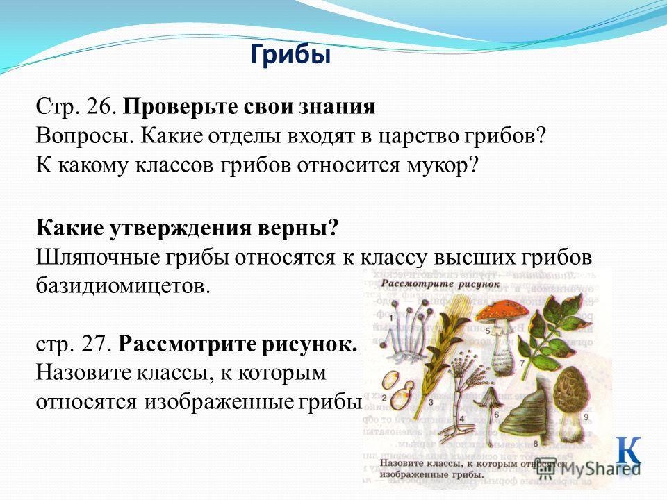 Грибы Стр. 26. Проверьте свои знания Вопросы. Какие отделы входят в царство грибов? К какому классов грибов относится мукор? Какие утверждения верны? Шляпочные грибы относятся к классу высших грибов базидиомицетов. стр. 27. Рассмотрите рисунок. Назов