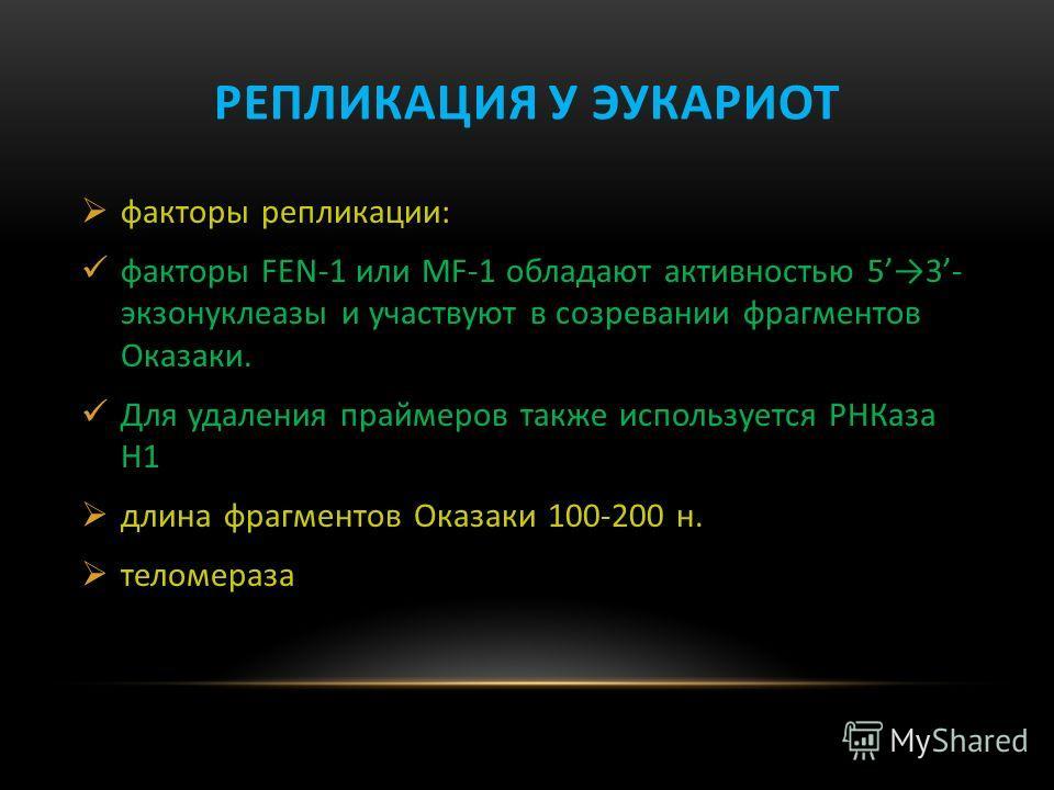 РЕПЛИКАЦИЯ У ЭУКАРИОТ факторы репликации: факторы FEN-1 или MF-1 обладают активностью 53- экзонуклеазы и участвуют в созревании фрагментов Оказаки. Для удаления праймеров также используется РНКаза H1 длина фрагментов Оказаки 100-200 н. теломераза