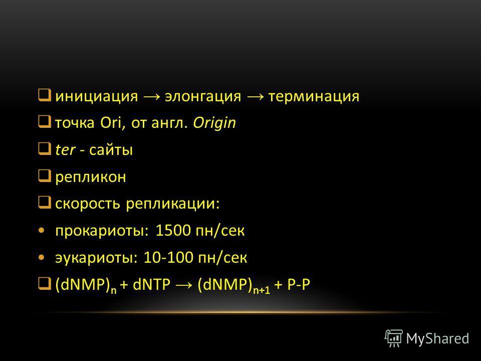 инициация элонгация терминация точка Ori, от англ. Origin ter - сайты репликон скорость репликации: прокариоты: 1500 пн/сек эукариоты: 10-100 пн/сек (dNMP) n + dNTP (dNMP) n+1 + P-P