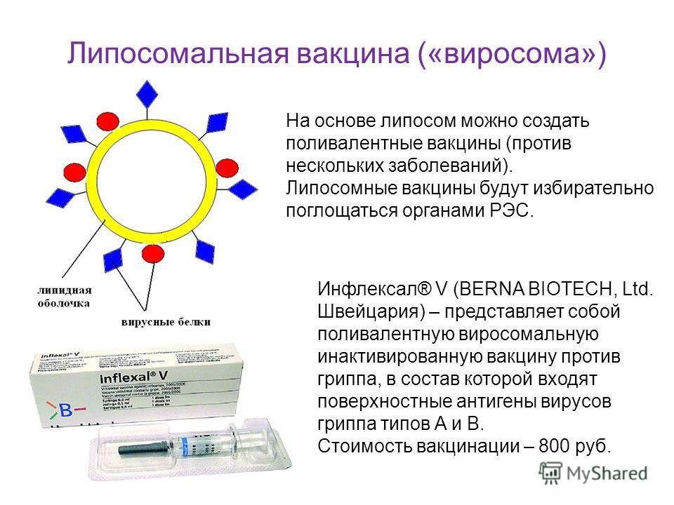 Липосомальная вакцина («виросома») На основе липосом можно создать поливалентные вакцины (против нескольких заболеваний). Липосомные вакцины будут избирательно поглощаться органами РЭС. Инфлексал® V (BERNA BIOTECH, Ltd. Швейцария) – представляет собо