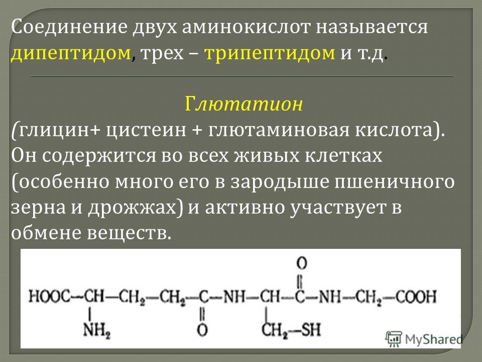 Соединение двух аминокислот называется дипептидом, трех – трипептидом и т. д. Глютатион ( глицин + цистеин + глютаминовая кислота ). Он содержится во всех живых клетках ( особенно много его в зародыше пшеничного зерна и дрожжах ) и активно участвует