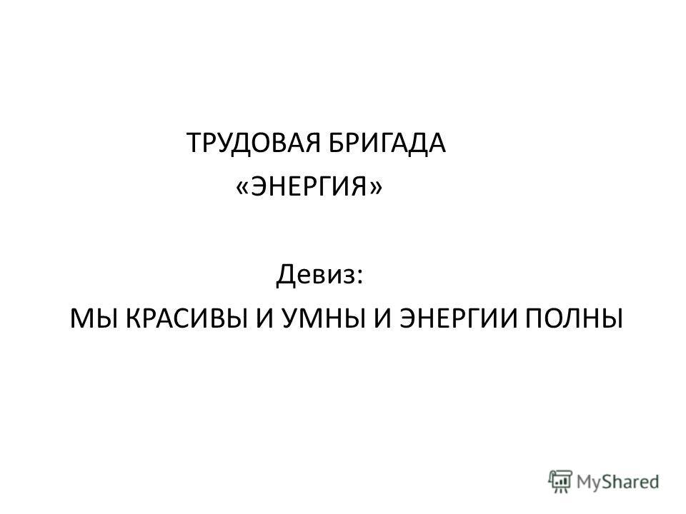 ТРУДОВАЯ БРИГАДА «ЭНЕРГИЯ» Девиз: МЫ КРАСИВЫ И УМНЫ И ЭНЕРГИИ ПОЛНЫ