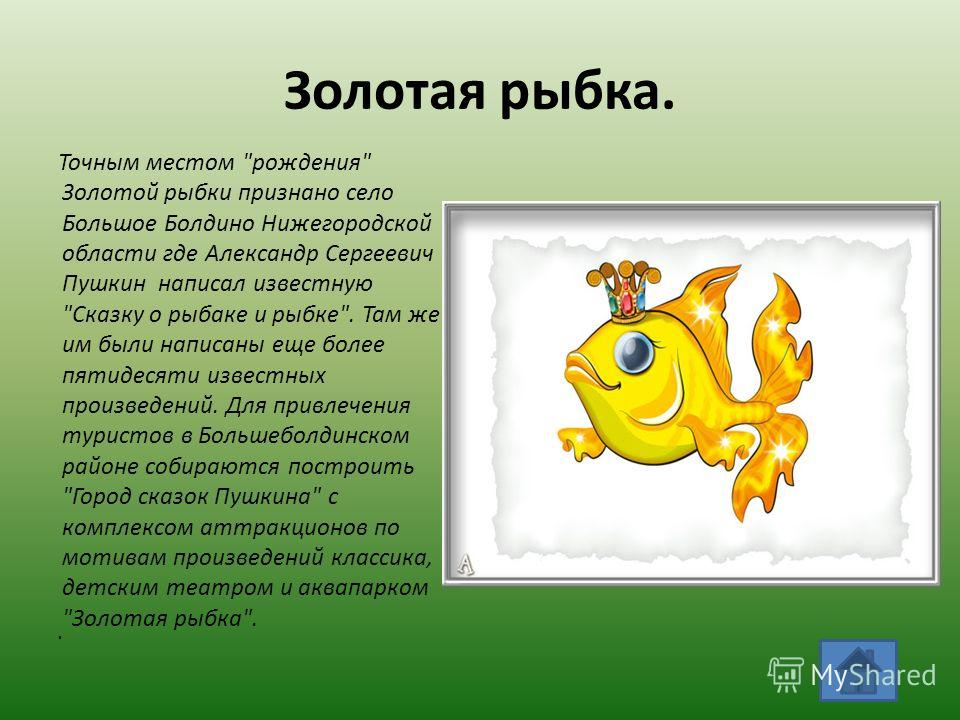 Золотая рыбка. Точным местом