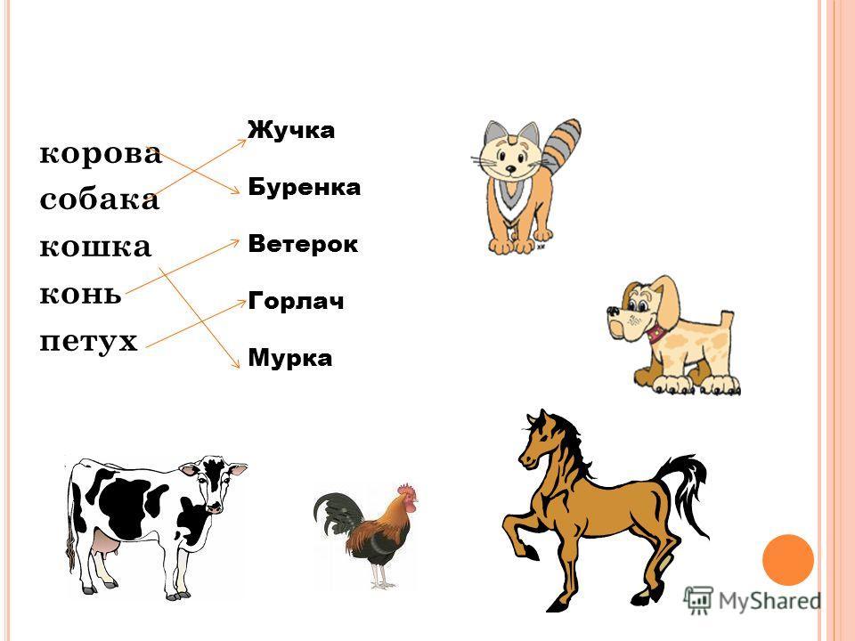 Воробьёв, Воронов, Сорокин, Бурёнка, Беляк, Рекс. С АМОПРОВЕРКА