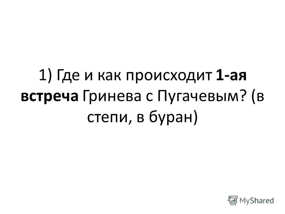 1) Где и как происходит 1-ая встреча Гринева с Пугачевым? (в степи, в буран)