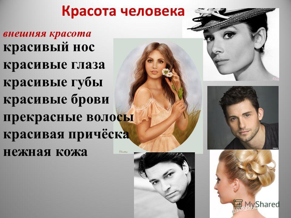 красивый нос красивые глаза красивые губы красивые брови прекрасные волосы красивая причёска нежная кожа внешняя красота Красота человека