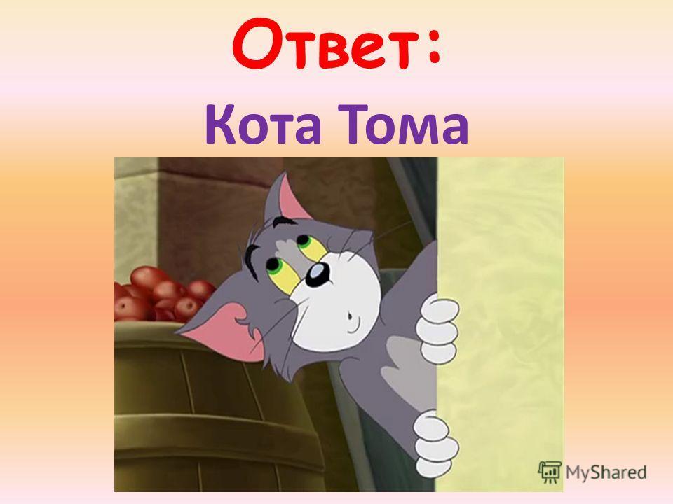 Ответ: Кота Тома
