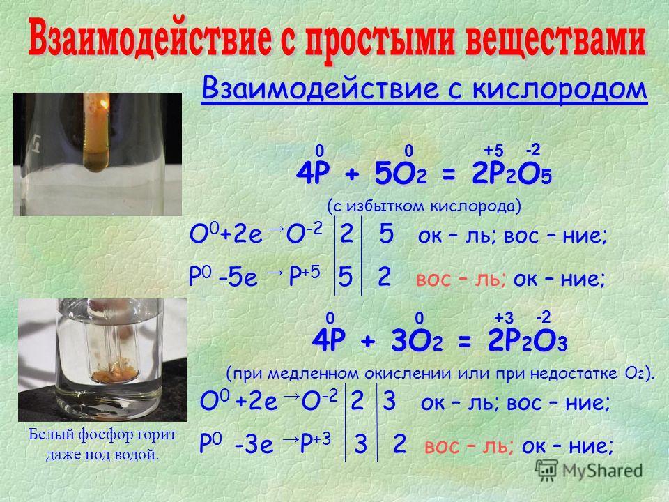 Взаимодействие с кислородом 4P + 5O 2 = 2P 2 O 5 (с избытком кислорода) 4P + 3O 2 = 2P 2 O 3 (при медленном окислении или при недостатке О 2 ). Белый фосфор горит даже под водой. 0 -2-2 +5+5 O 0 +2е O -2 2 5 ок – ль; вос – ние; P 0 -5е P +5 5 2 вос –