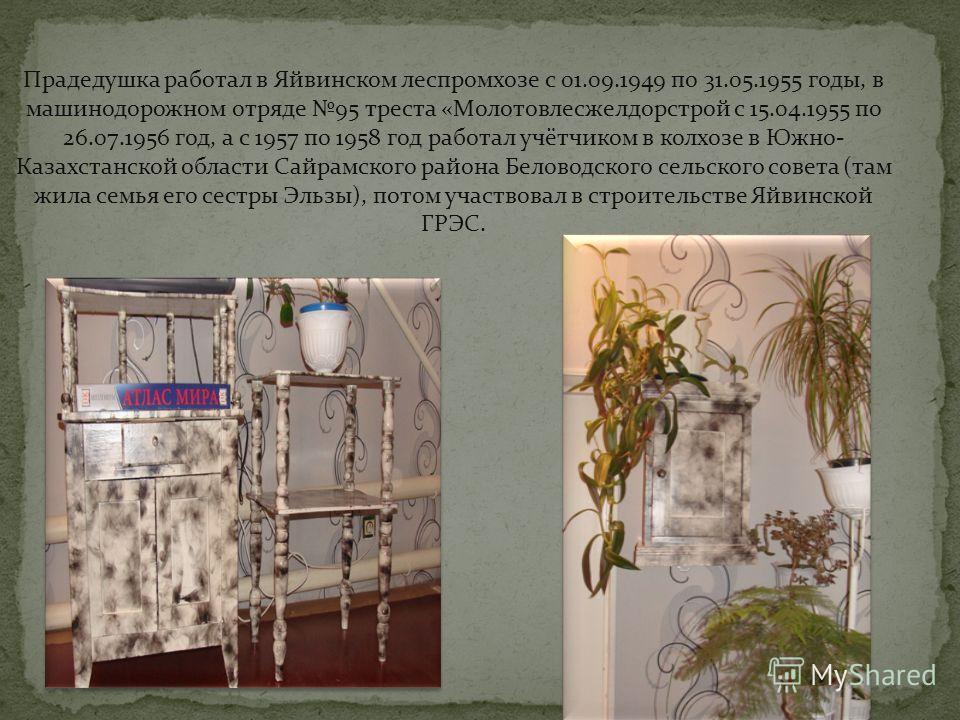 Прадедушка работал в Яйвинском леспромхозе с 01.09.1949 по 31.05.1955 годы, в машинодорожном отряде 95 треста «Молотовлесжелдорстрой с 15.04.1955 по 26.07.1956 год, а с 1957 по 1958 год работал учётчиком в колхозе в Южно- Казахстанской области Сайрам