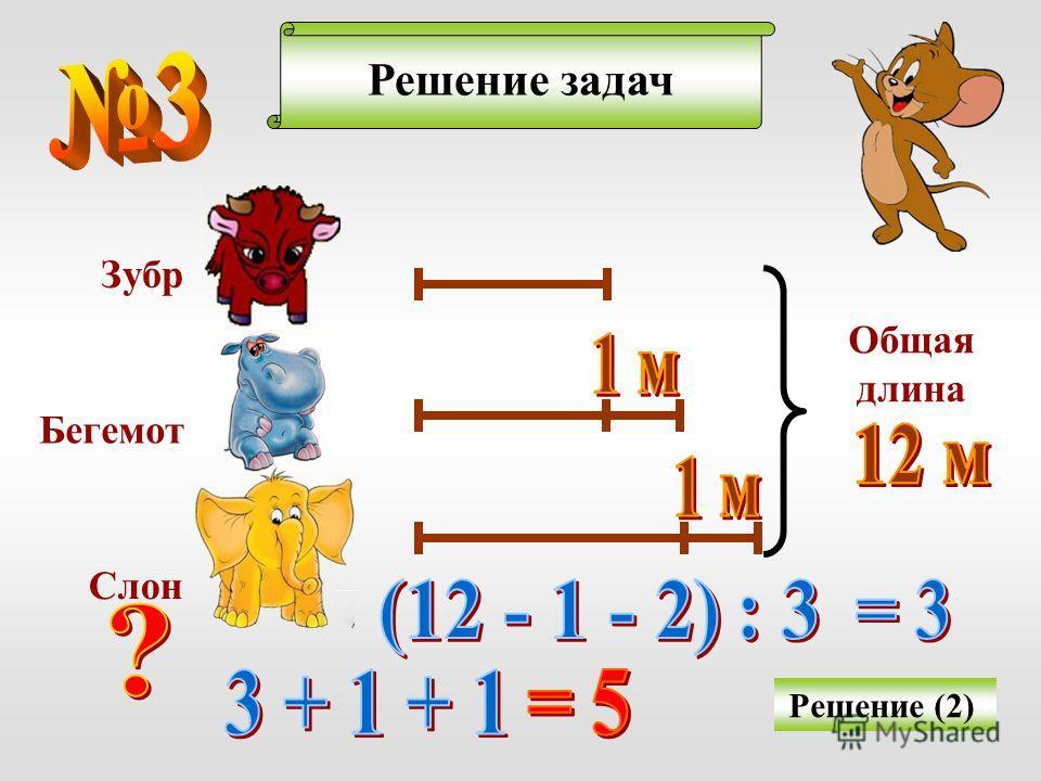 Решение задач Решение (2) Зубр Бегемот Слон Общая длина