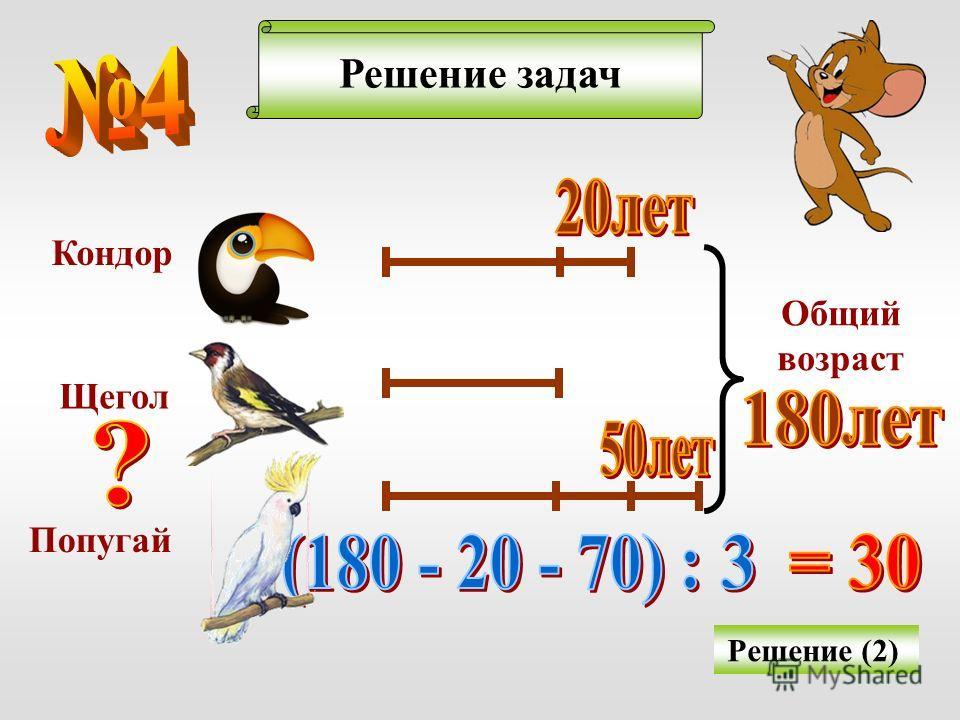 Решение задач Решение (2) Кондор Щегол Попугай Общий возраст