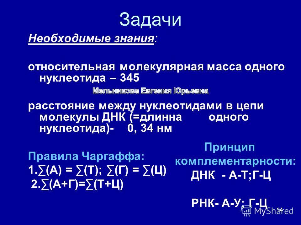 14 Задачи Необходимые знания: относительная молекулярная масса одного нуклеотида – 345 расстояние между нуклеотидами в цепи молекулы ДНК (=длинна одного нуклеотида)- 0, 34 нм Правила Чаргаффа: 1.(А) = (Т); (Г) = (Ц) 2.(А+Г)=(Т+Ц) Принцип комплементар
