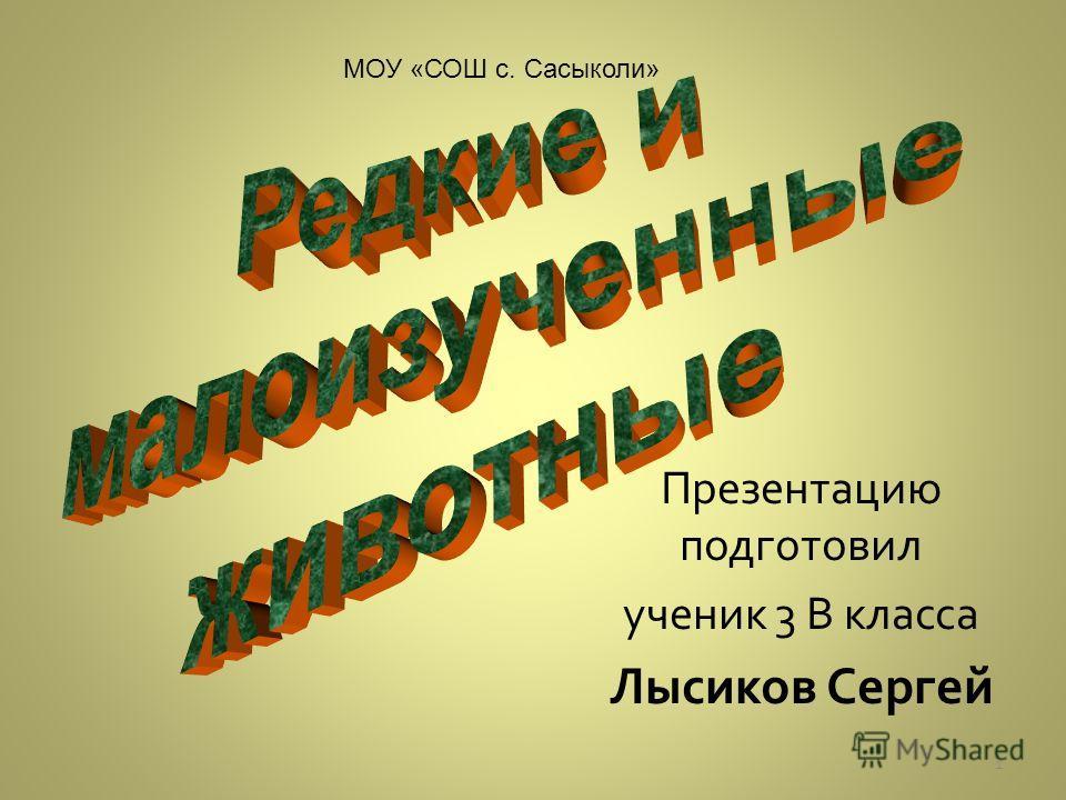 Презентацию подготовил ученик 3 В класса Лысиков Сергей МОУ «СОШ с. Сасыколи» 1