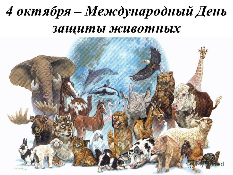 Картинки по запросу международный день защиты животных