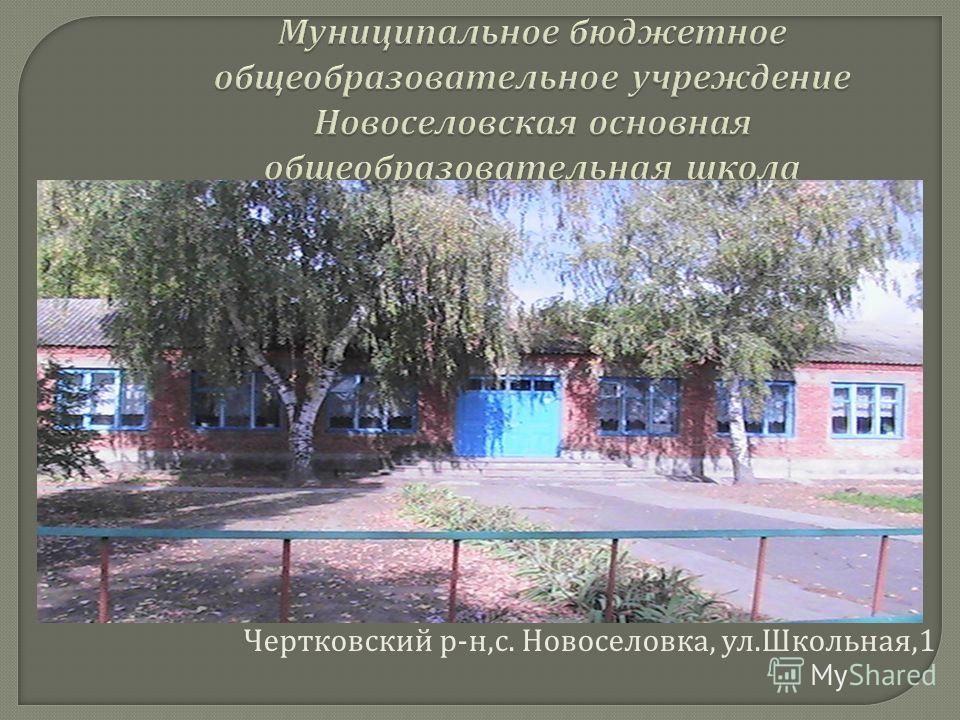 Чертковский р - н, с. Новоселовка, ул. Школьная,1