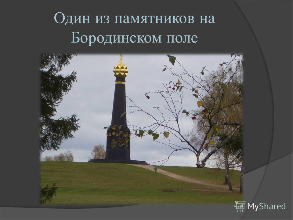 Один из памятников на Бородинском поле