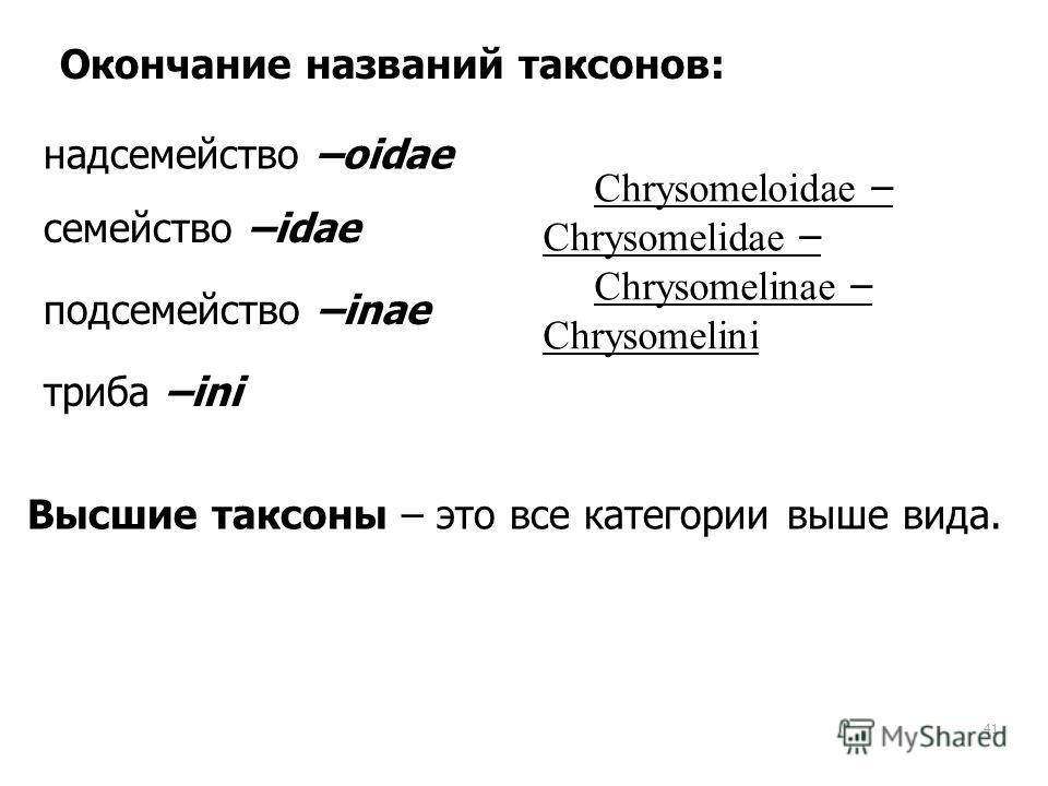41 Окончание названий таксонов: надсемейство –oidae семейство –idae подсемейство –inae триба –ini Chrysomeloidae – Chrysomelidae – Chrysomelinae – Chrysomelini Высшие таксоны – это все категории выше вида.